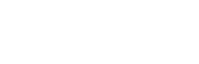 Carucel logo hvit